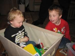 Grey found a fun toy in the toybox
