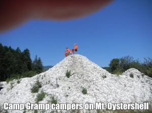 Oyster Mountain