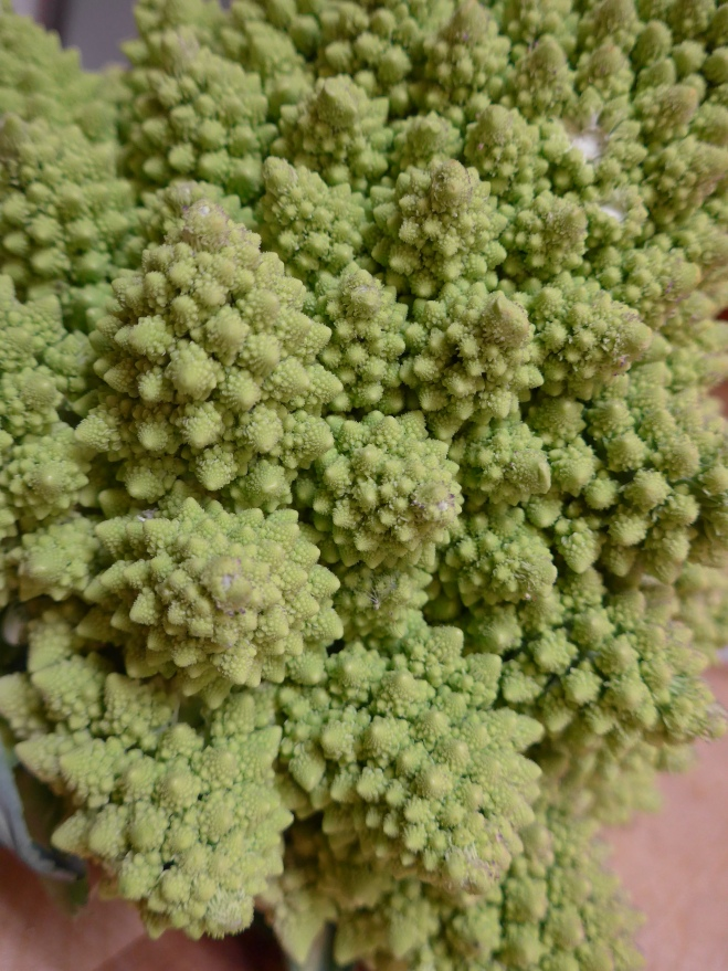 Fractious fractals of romanesco