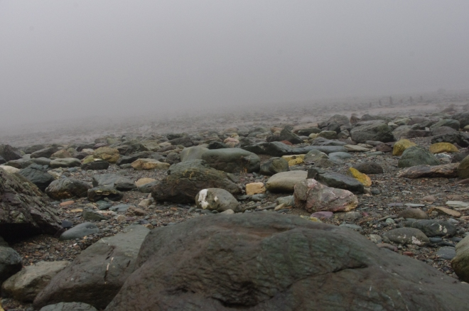 Rocks in the fog