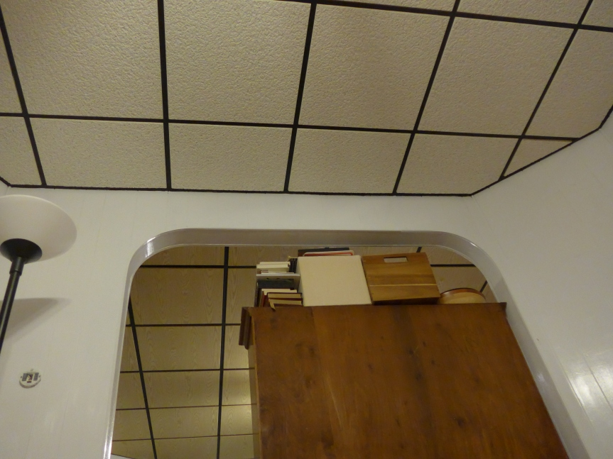 Every room in the house has a different tile of drop ceiling, taking about 9 inches off the height of the rooms.