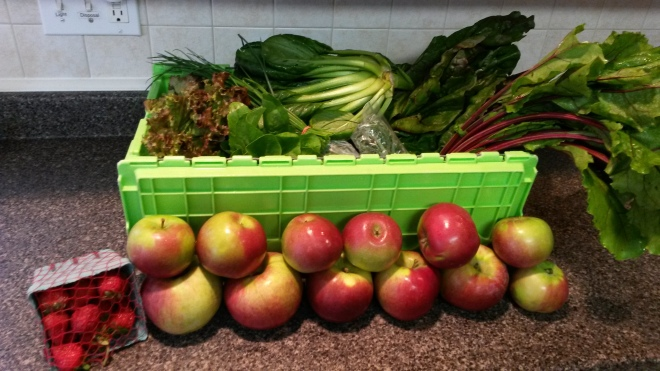 A week's worth of farm share fun