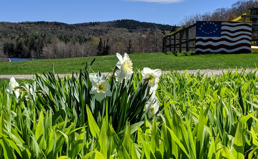 Flowers and blue skies overlooking a flag and Wright's Pond